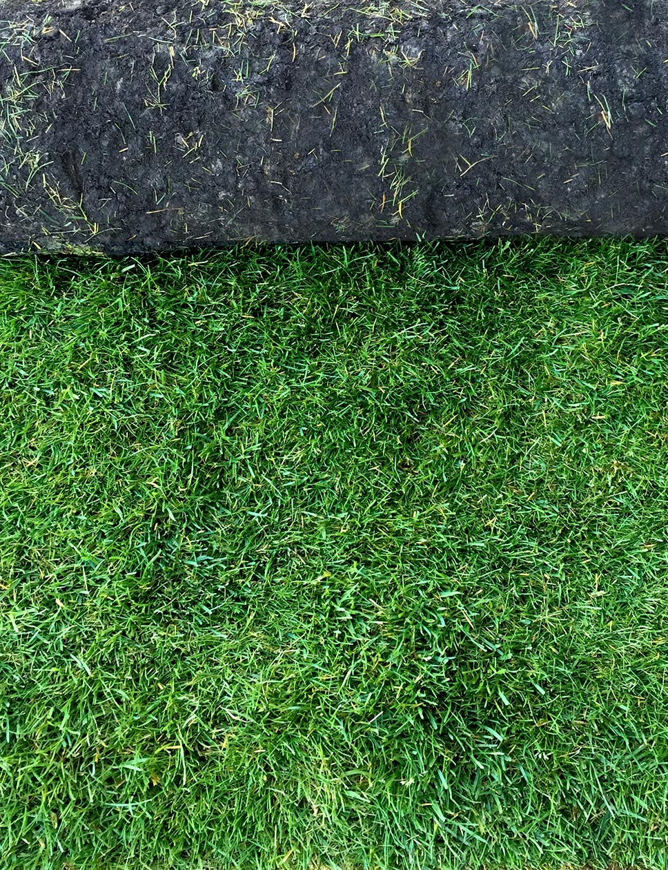 Luxury hardwearing turf